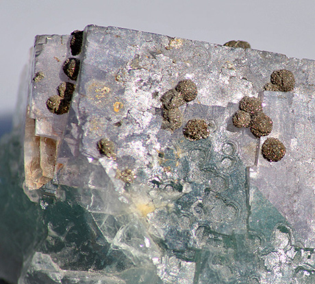 BiColour Fluorite with Pyrite spheres