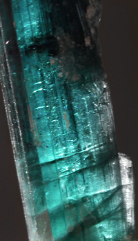 Blue Green GEM Tourmaline collection