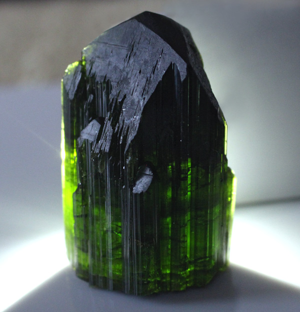 World Class Green Tourmaline point